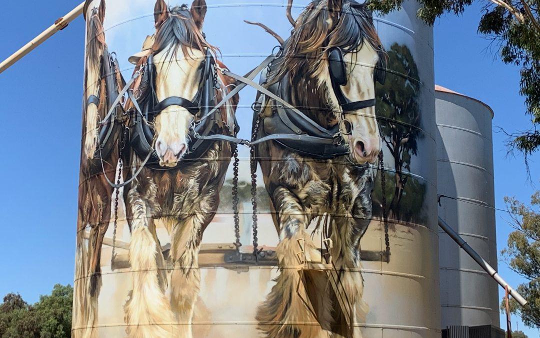Drive the Benalla Silo Art Trail